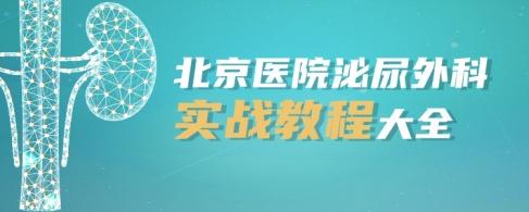 北京医院泌尿外科实战教程大全