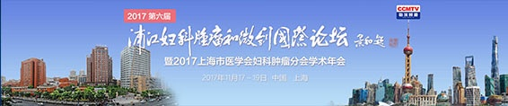 第六届浦江妇科肿瘤和微创国际论坛