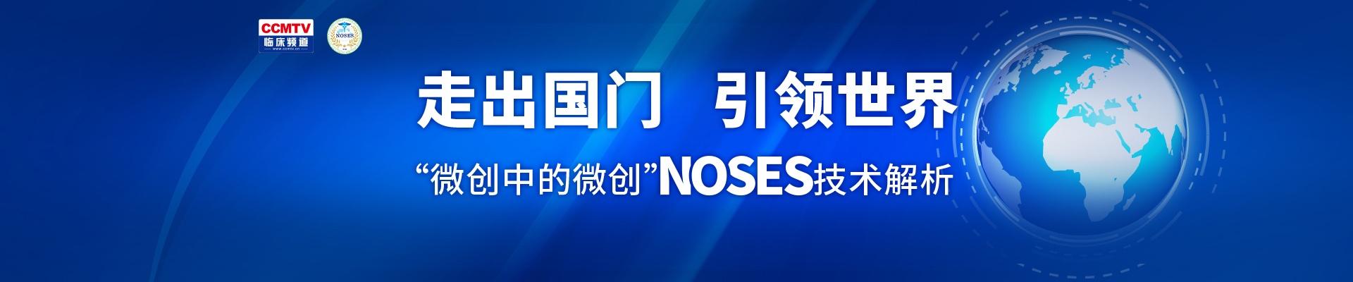 """""""微创中的微创""""NOSES技术解析专题"""