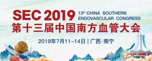 SEC2019  第十三届中国南方血管大会